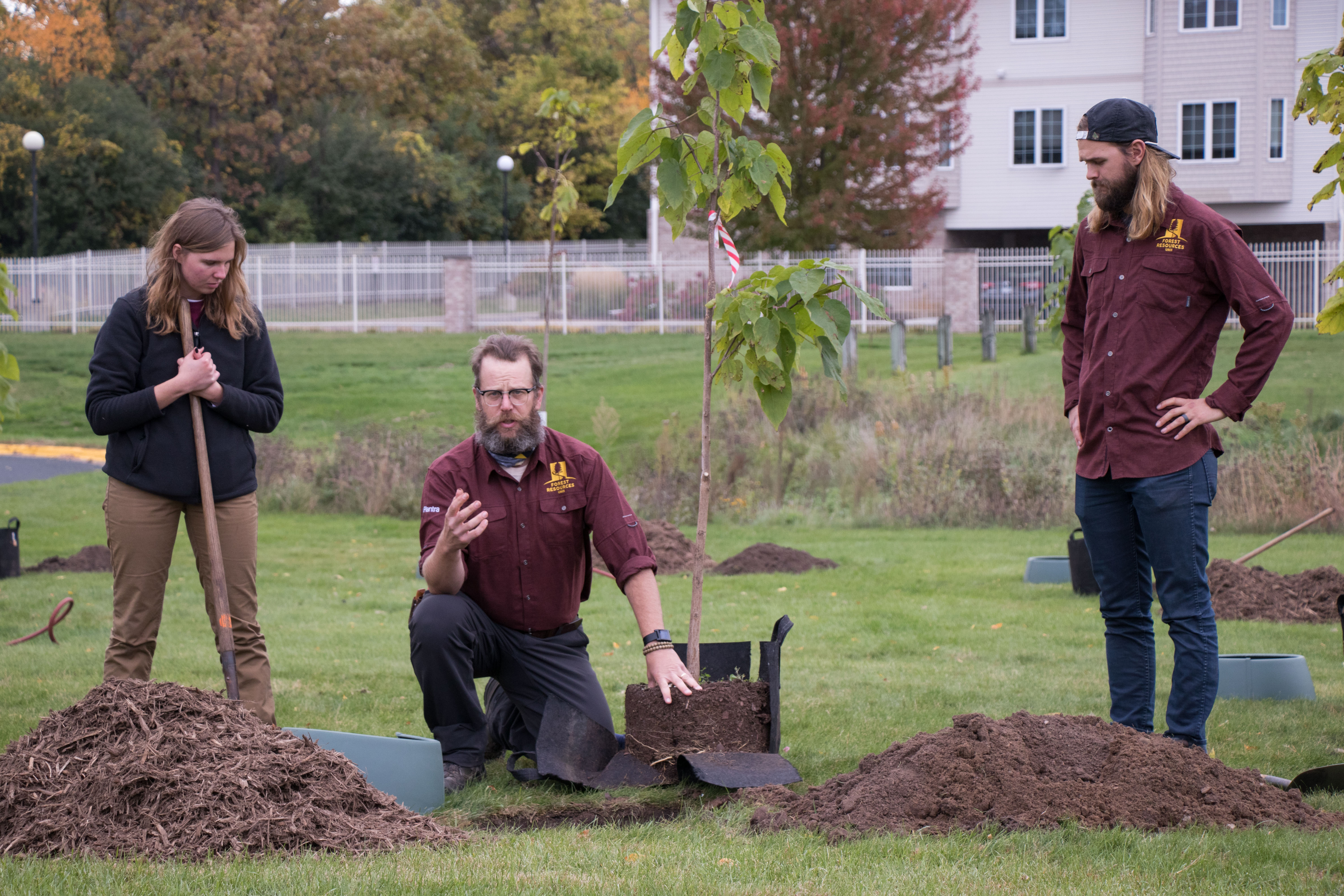 Friendship Forest Plants Connections on Campus